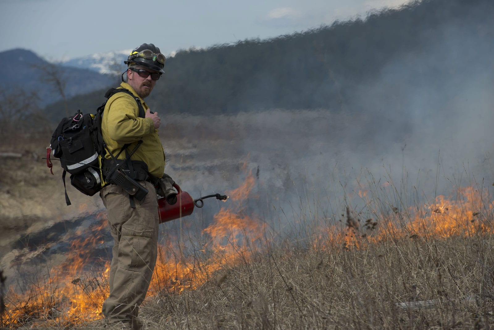 Prescribed Burns in 2020